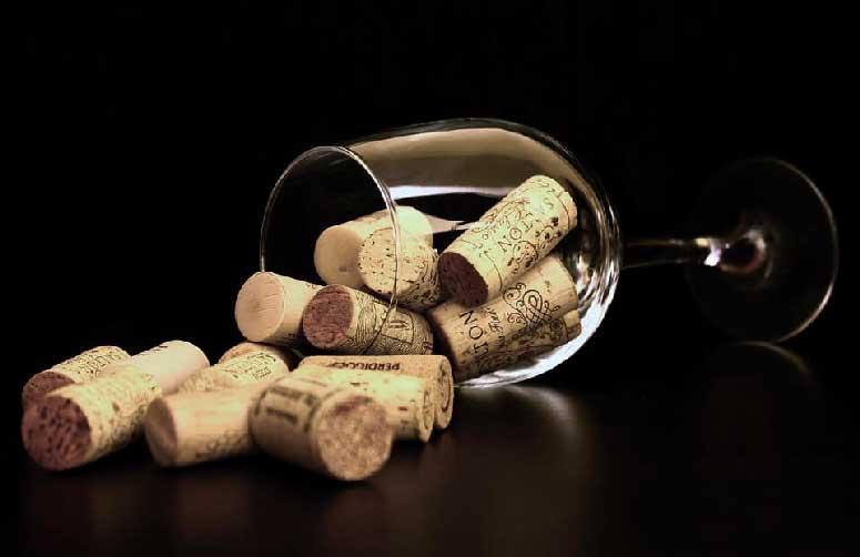 Barolo Wine guida turistica