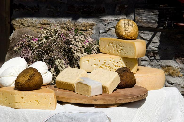 formaggi Cocconato cheese