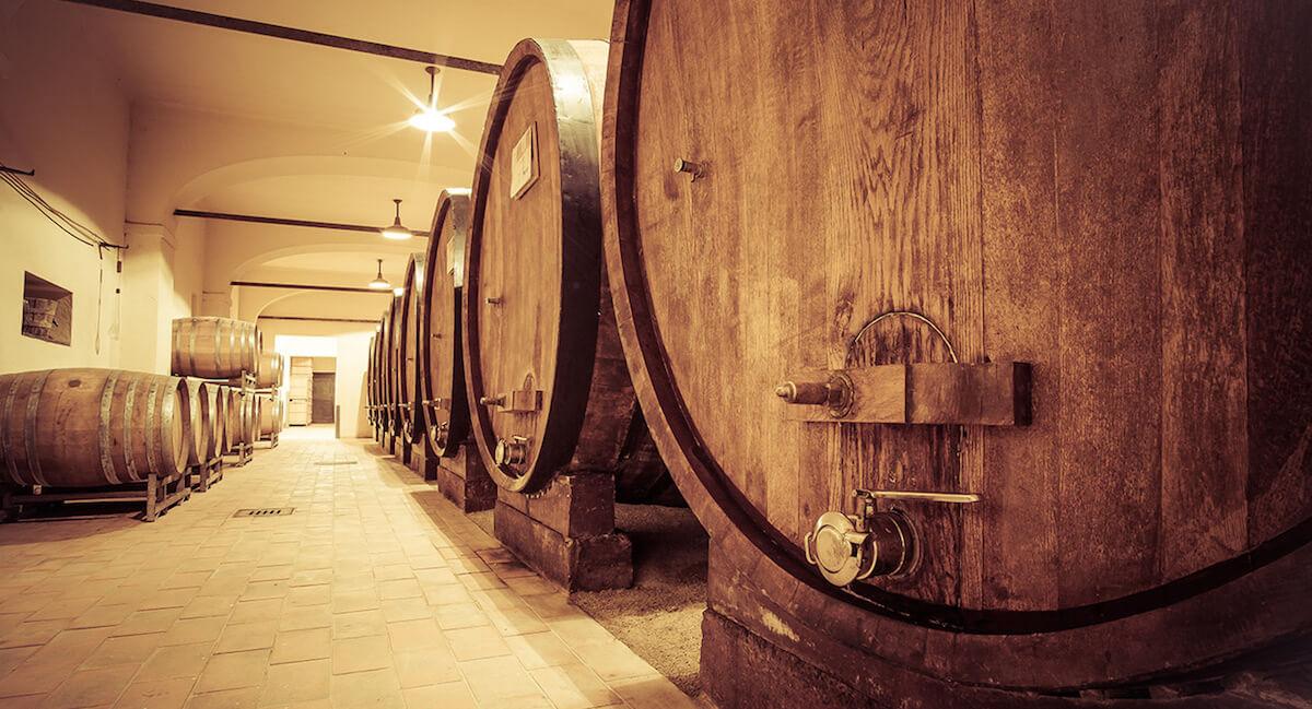 Degustazione Vini e Tartufo nelle Langhe